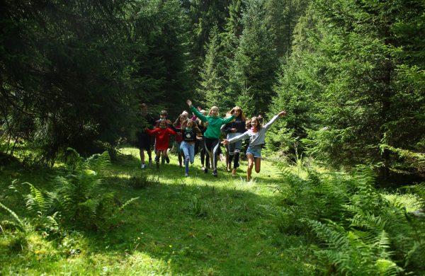 Naturerfahrung im Wald
